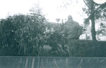 Calvin Hull from Physical Plant waters plants by George Fox University Archives