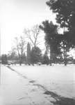 Snow covered Quad by George Fox University Archives