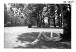 Student studying under a tree. by George Fox University Archives