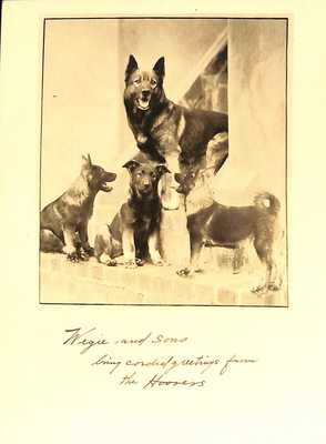 Wegie and Sons Greeting Card