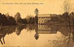 Old Chehalem Valley Mill and Pond by George Fox University Archives