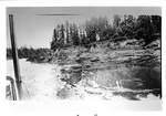 Bank of the Willamette River from a Riverboat by George Fox University Archives