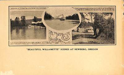 Willamette River Boats Postcard