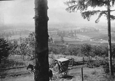 View from Chehalem Mountain
