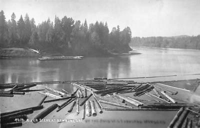 River Scene at Newberg, Postcard