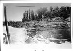 Banks of the Willamette River by George Fox University Archives