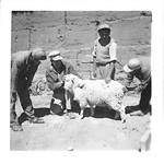 Bolivia and Peru Missions by George Fox University Archives