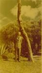 Howard 1948 2
