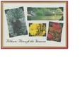 Tilikum: Through The Seasons Holiday Card